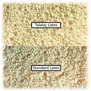talalay latex versus standaard latex